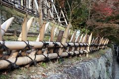 Ο δεσμός φρακτών μπαμπού με το μαύρο ιαπωνικό ύφος σχοινιών, έκοψε το αιχμηρό τ Στοκ Εικόνες