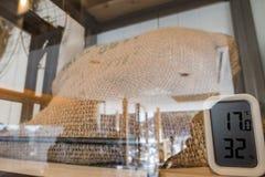 Ο διάσημος Arabica καφές Στοκ Εικόνες