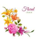 Ο διανυσματικός κρίνος watercolor αυξήθηκε γαμήλια κάρτα λουλουδιών ελεύθερη απεικόνιση δικαιώματος