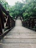 Ο δρόμος βουνών είναι τραχύς, είναι ένας δρόμος σανίδων φιαγμένος από  στοκ φωτογραφία