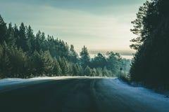 Ο δρόμος εξαφανίζεται πίσω από το όμορφο δέντρο ιουνιπέρων στο ηλιόλουστο και παγωμένο χειμερινό τοπίο στοκ εικόνα με δικαίωμα ελεύθερης χρήσης