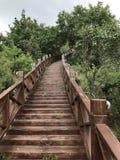 Ο δρόμος επάνω το βουνό στοκ εικόνες με δικαίωμα ελεύθερης χρήσης