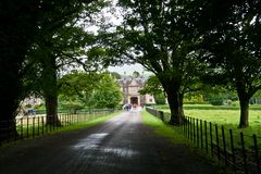 Ο δρόμος μέσω του δάσους στο σπίτι Muckross και κήποι, Killarney στην Ιρλανδία στοκ εικόνα με δικαίωμα ελεύθερης χρήσης