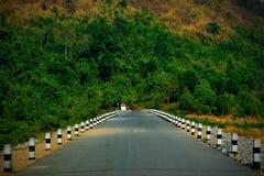 Ο δρόμος που οδηγεί στο βουνό στοκ εικόνα