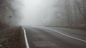 Ο δρόμος στο ομιχλώδες δάσος στοκ φωτογραφία