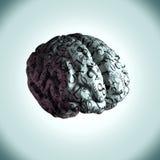 Ο εγκέφαλος μιας μαθηματικής μεγαλοφυίας, εξισώσεις που χαρτογραφούνται στο brai Στοκ εικόνα με δικαίωμα ελεύθερης χρήσης