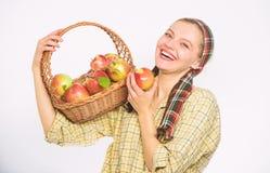 Ο ειλικρινής χωρικός γυναικών φέρνει το καλάθι με τα φυσικά φρούτα Κηπουρός γυναικείων αγροτών υπερήφανος του κηπουρού γυναικών σ στοκ εικόνες