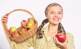 Ο ειλικρινής χωρικός γυναικών φέρνει το καλάθι με τα φυσικά φρούτα Γυναικείος κηπουρός υπερήφανος του αγροτικού ύφους κηπουρών γυ στοκ εικόνες
