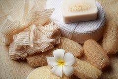 Ο ειδικός τρίβει το σαπούνι στη SPA που τίθεται για το υγιές δέρμα Στοκ Φωτογραφία
