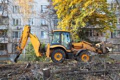 Ο εκσακαφέας αφαιρεί τα καταρριφθε'ντα δέντρα Στοκ Φωτογραφία
