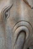 ο ελέφαντας της Κίνας καλλιεργεί αυτοκρατορικός στοκ εικόνα με δικαίωμα ελεύθερης χρήσης