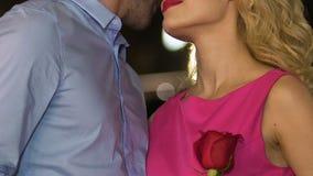 Ο ελκυστικός άνδρας που φιλά την ξανθή γυναίκα και που κρατά κόκκινος αυξήθηκε, γλυκιά ρομαντική ημερομηνία απόθεμα βίντεο