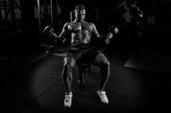 Ο επαγγελματικός αθλητής κάνει μια άσκηση στους δικέφαλους μυς με την ανύψωση Στοκ Εικόνα