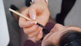 Ο επαγγελματικός καλλιτέχνης makeup χρωματίζει τα φρύδια χρησιμοποιώντας τη βούρτσα για τη γυναίκα απόθεμα βίντεο