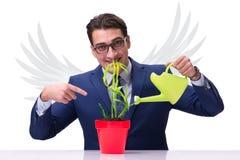 Ο επενδυτής αγγέλου τα μελλοντικά κέρδη που απομονώνονται που αυξάνεται στο λευκό Στοκ φωτογραφία με δικαίωμα ελεύθερης χρήσης