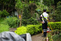 Ο επιθεωρητής κάνει τις μετρήσεις για το κτηματολόγιο Ασιατικός επιθεωρητής που εργάζεται στο πράσινο θερινό πάρκο στοκ εικόνα με δικαίωμα ελεύθερης χρήσης