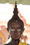 Ο επικεφαλής Βούδας Στοκ Εικόνες