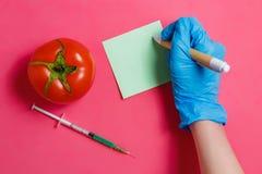 Ο επιστήμονας ΓΤΟ κάνει τη σημείωση, πράσινο υγρό στη σύριγγα, κόκκινη ντομάτα - γενετικά τροποποιημένη έννοια τροφίμων στο ρόδιν Στοκ φωτογραφία με δικαίωμα ελεύθερης χρήσης