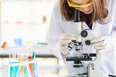 Ο επιστήμονας κοιτάζει μέσω του μικροσκοπίου για το πείραμα στοκ φωτογραφίες με δικαίωμα ελεύθερης χρήσης