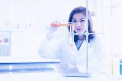 Ο επιστήμονας χύνει το υγρό στο σωλήνα δοκιμής στοκ εικόνα με δικαίωμα ελεύθερης χρήσης