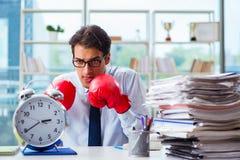 Ο επιχειρηματίας με τα εγκιβωτίζοντας γάντια στο γραφείο Στοκ Φωτογραφία