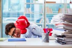Ο επιχειρηματίας με τα εγκιβωτίζοντας γάντια στο γραφείο Στοκ φωτογραφία με δικαίωμα ελεύθερης χρήσης