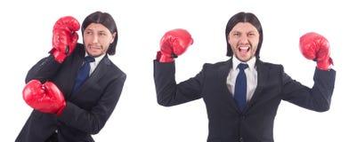 Ο επιχειρηματίας με τα εγκιβωτίζοντας γάντια στο λευκό Στοκ Εικόνα