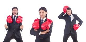 Ο επιχειρηματίας με τα εγκιβωτίζοντας γάντια στο λευκό Στοκ εικόνες με δικαίωμα ελεύθερης χρήσης