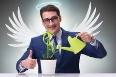 Ο επιχειρηματίας στην έννοια επενδυτών αγγέλου που αυξάνεται τα μελλοντικά κέρδη Στοκ φωτογραφίες με δικαίωμα ελεύθερης χρήσης