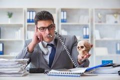 Ο επιχειρηματίας στο ανθρώπινο κρανίο εκμετάλλευσης γραφείων καπνίζοντας Στοκ Εικόνες
