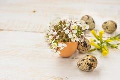 Ο λεπτός άσπρος τομέας ανθίζει eggshell, αυγά ορτυκιών, κίτρινη, χειροποίητη διακόσμηση Πάσχας Στοκ Εικόνα