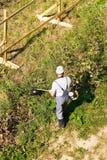 Ο εργαζόμενος κόβει τη χλόη Βενζίνη χρήσεων brushcutter Κοντά στο νέο πλαίσιο του φράκτη κατασκευής στοκ εικόνες