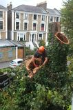 Ο εργαζόμενος κόβει τους κλάδους δέντρων Στοκ φωτογραφία με δικαίωμα ελεύθερης χρήσης