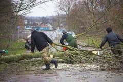 Ο εργαζόμενος κόβει το πεσμένο δέντρο στο δρόμο Στοκ Φωτογραφία