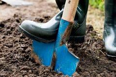 Ο εργαζόμενος σκάβει το μαύρο χώμα με το φτυάρι στο φυτικό κήπο Στοκ Φωτογραφίες
