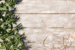 Ο εργασιακός χώρος με το επίπεδο ντεκόρ wildflower βρέθηκε Στοκ εικόνα με δικαίωμα ελεύθερης χρήσης