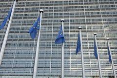 Ο ευρωπαϊκός κυματισμός σημαιών Στοκ εικόνες με δικαίωμα ελεύθερης χρήσης