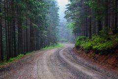 Ο ευρύς δρόμος οδηγεί στο ομιχλώδες δάσος νεράιδων Στοκ φωτογραφία με δικαίωμα ελεύθερης χρήσης