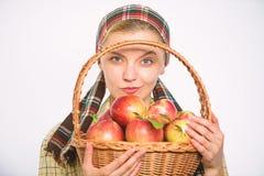 Ο εύθυμος χωρικός γυναικών φέρνει το καλάθι με τα φυσικά φρούτα Κηπουρός γυναικείων αγροτών υπερήφανος του κηπουρού γυναικών συγκ στοκ εικόνα με δικαίωμα ελεύθερης χρήσης
