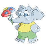 Ο ελέφαντας δίνει τα λουλούδια ελεύθερη απεικόνιση δικαιώματος