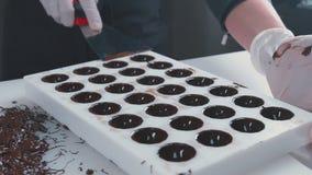 Ο ζαχαροπλάστης αφαιρεί την υπερβολική σοκολάτα Το σώμα των σοκολατών απόθεμα βίντεο