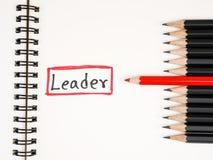 Ο ηγέτης 30 Στοκ Εικόνες