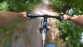 Οδηγήστε ένα ποδήλατο στα ξύλα σε έναν βρώμικο δρόμο ακτινίου απόθεμα βίντεο