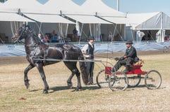 Οδηγός σε ένα horse-drawn κάρρο Στοκ εικόνες με δικαίωμα ελεύθερης χρήσης
