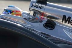 Οδηγός Fernando Alonso η ομάδα Στοκ Εικόνα