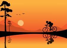 Οδηγώντας ποδήλατο νεαρών άνδρων στα υπόβαθρα ηλιοβασιλέματος απεικόνιση αποθεμάτων
