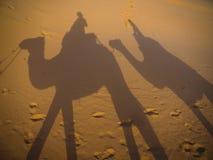 Οδηγώντας τις καμήλες στην έρημο Σαχάρας, με τις σκιές Στοκ Εικόνα