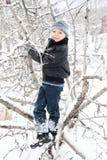 οδηγώντας χειμώνας ελκήθρων διασκέδασης στοκ εικόνες με δικαίωμα ελεύθερης χρήσης