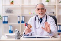 Ο ηλικίας αρσενικός καρδιολόγος γιατρών με το πρότυπο καρδιών στοκ φωτογραφίες