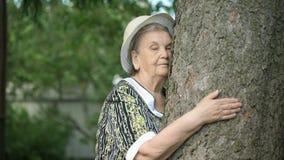 Ο ηλικιωμένος κορμός δέντρων αγκαλιάσματος αυτή παραδίδει το δάσος φιλμ μικρού μήκους